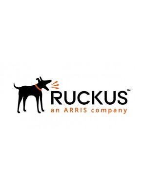 Ruckus Networks ,...