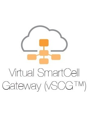Ruckus Virtual SmartZone Gateway 3.0 or newer...