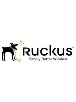 Ruckus Associate Partner...
