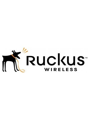 Ruckus Watchdog Remote Support,  ICX7150-C08P...